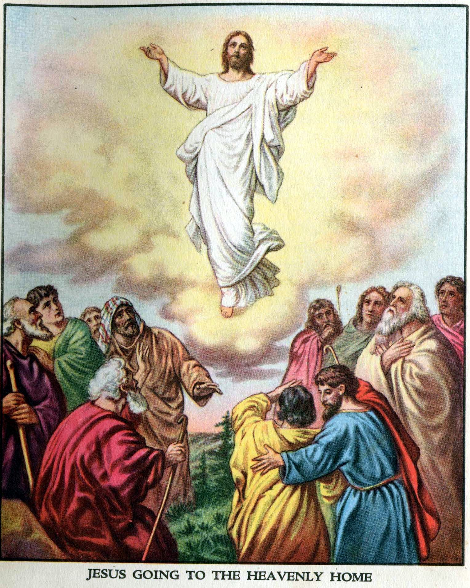 the story of jesus christ The story of jesus christ is taking the gospel to millions of people each year.